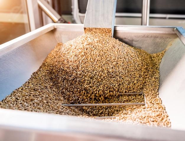 工場で麦芽種子を粉砕する技術的プロセス