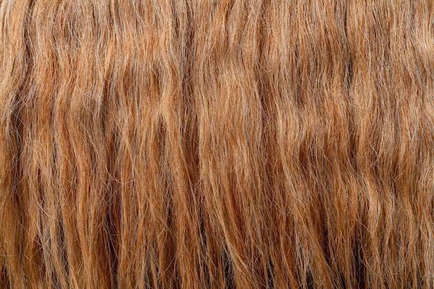 美しい太い赤髪の質感。美しいウェーブのかかった髪。