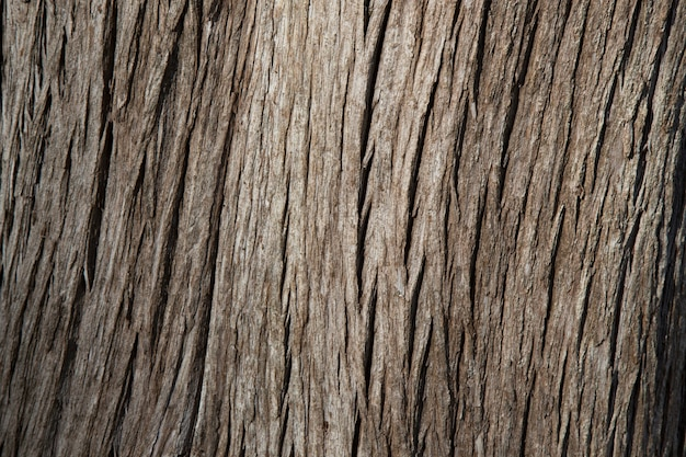 Текстура темно-коричневого старого дерева. кора дерева, деревянный фон. крупный план текстуры широкой доски, панорамный баннер.