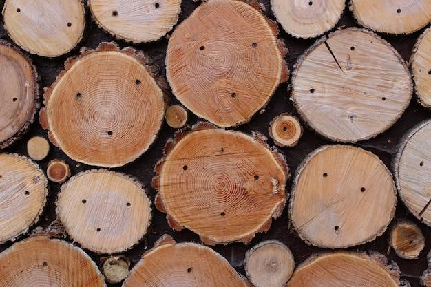 木のスライスのクローズアップのテクスチャ