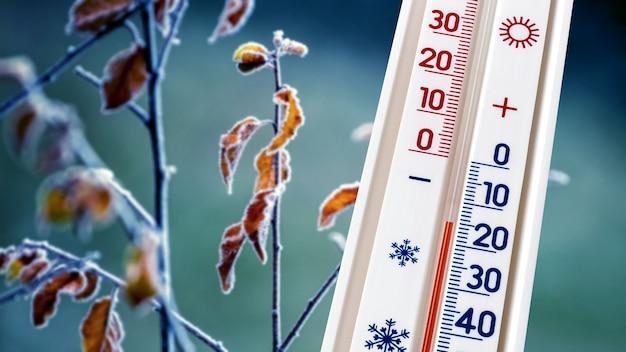 木の上の霜で覆われた乾燥した葉の背景にある温度計は、15度の氷点下を示しています