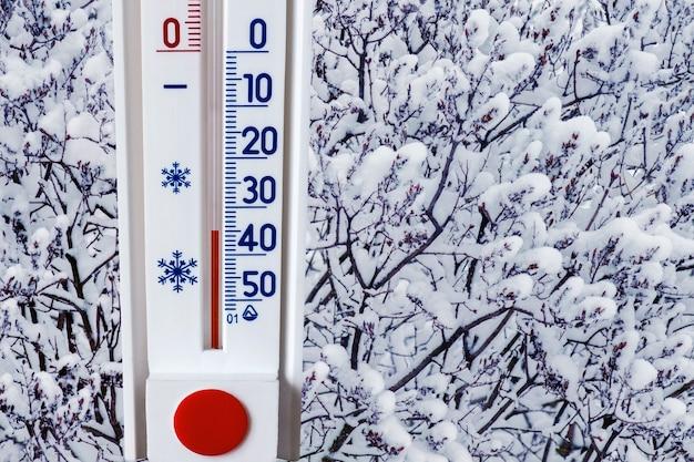 Термометр на фоне заснеженного дерева показывает минус 35 градусов. сильный мороз, сложные погодные условия_