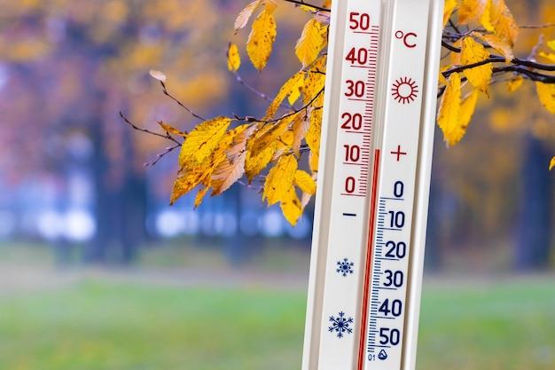 Термометр на фоне осеннего леса показывает 15 градусов тепла. теплая осенняя погода