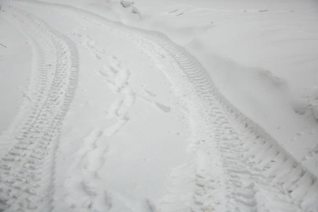 雪上のタイヤの痕跡