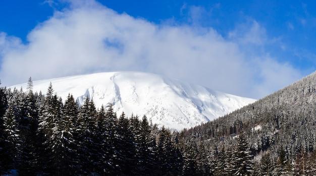 Вершина горы покрыта снегом.