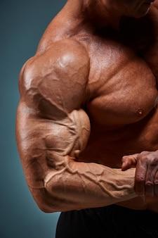 회색 배경에 매력적인 남성 보디 빌더의 몸통.