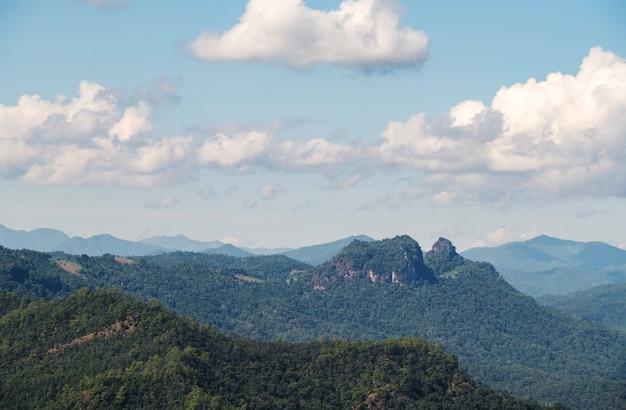 雲のある高山地帯の熱帯林の静かな景色を眺めることができます。