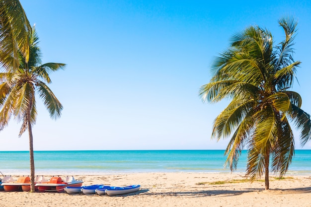 青緑色の水と夏の日にヨットとヤシの木がキューバのバラデロの熱帯のビーチ。