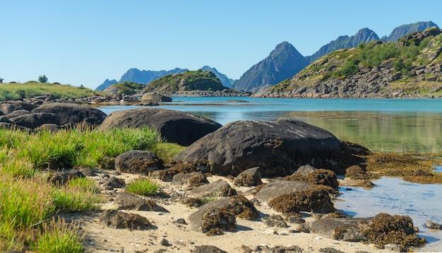 만의 청록색 물, 여름에는 돌과 푸른 잔디, arsteinen 섬, lofoten 군도, 노르웨이