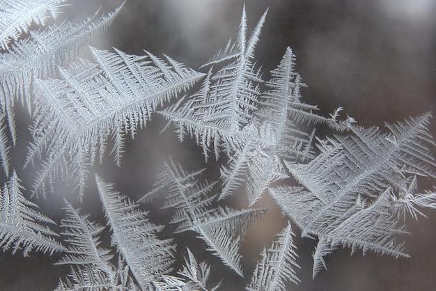 窓ガラスのユニークな氷のパターン
