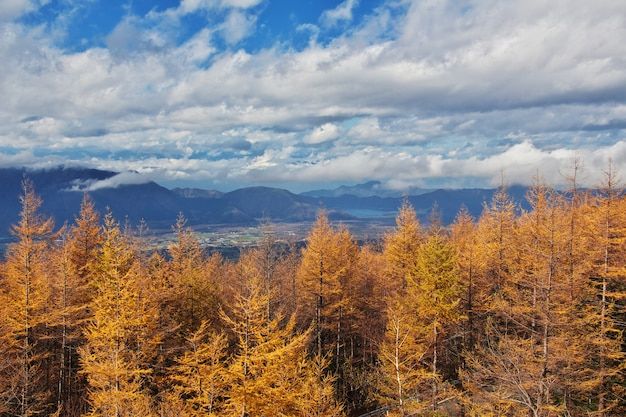 Вид на национальный парк фудзи на осень, япония