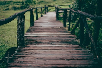 The walkway is a wooden bridge.Wood bridge