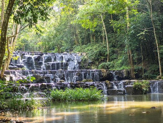 緑の森の滝。