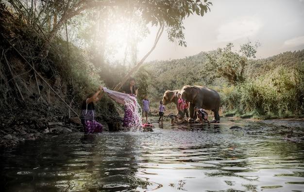 코끼리의 삶의 방식