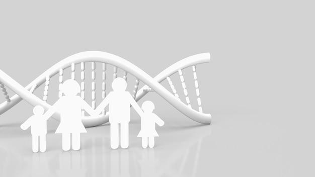 흰색 dna 및 가족 종이는 과학 또는 의료 개념 3d 렌더링을 위해 흰색 배경에 잘립니다.