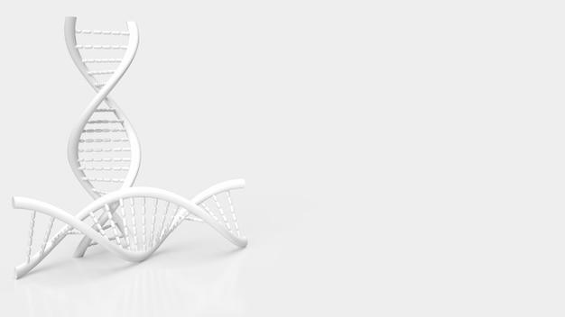과학 또는 의료 개념 3d 렌더링에 대 한 흰색 배경에 흰색 dna