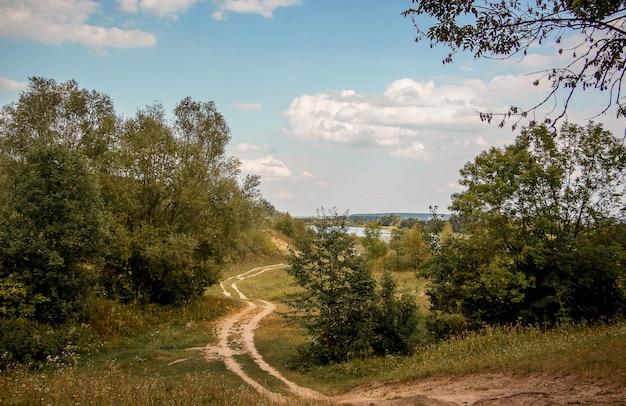 木々の間の曲がりくねった未舗装の道路。木、道、白い雲と青い空と秋の風景