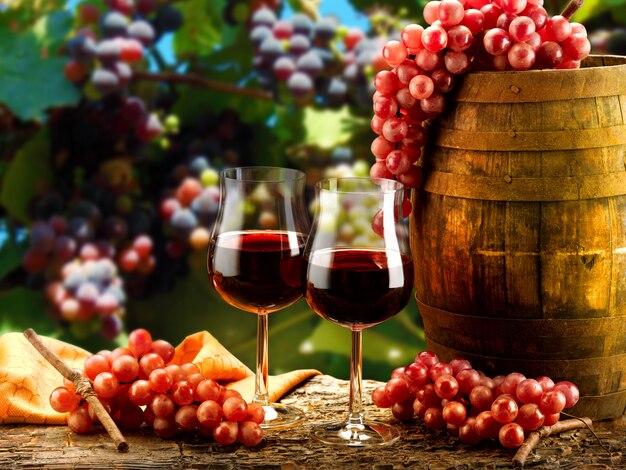 Вино с его запахами и ароматами во всех его формах