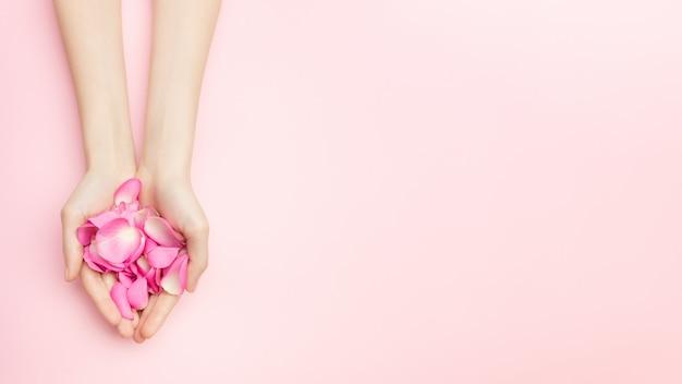 女性の手はピンクの背景にバラの花を保持します。細い手首と自然なマニキュア。敏感なスキンケアのための化粧品。自然な花びらの化粧品、抗しわハンドケア。