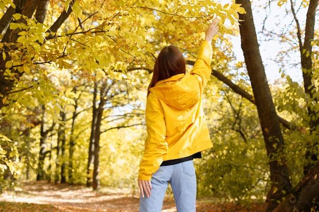 女性は背中を持って紅葉に手を伸ばす。テキスト用の空き領域。