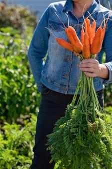 Рука женщины держит кучу моркови доставка свежесобранных овощей