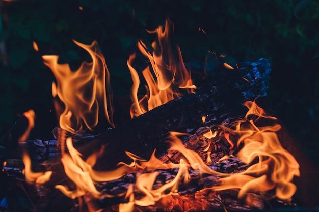 용광로의 불에서 타는 나무.
