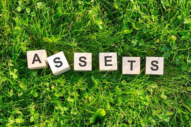 Assets라는 단어는 나무 큐브에 쓰여 있습니다. 블록은 햇빛이 비치는 푸른 잔디에 있습니다. 선택적 초점입니다.