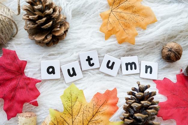 흰색 바탕에 나무 글자와 마른 잎으로 쓰여진 가을이라는 단어