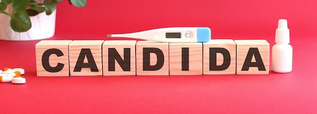 칸디다라는 단어는 나무 큐브로 만들어졌습니다.