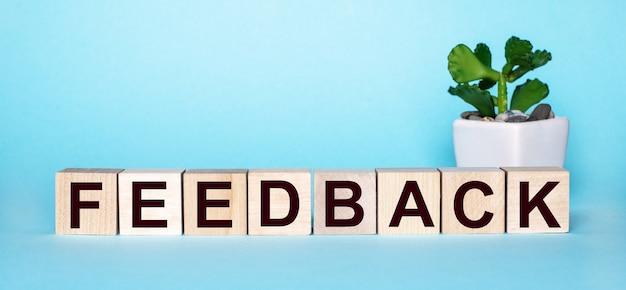フィードバックという言葉は、水色の背景の上の鍋の花の近くの木製の立方体に書かれています
