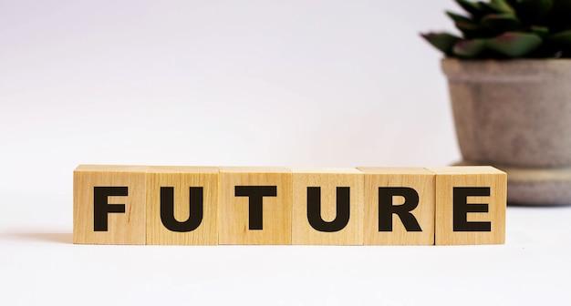 鉢植えの花の近くの明るい背景の木製の立方体に「未来」という言葉。焦点ぼけ