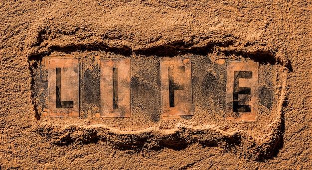 건조한 오렌지 먼지 포스트아포칼립스 또는 가뭄 개념 한가운데에 있는 단어 생명