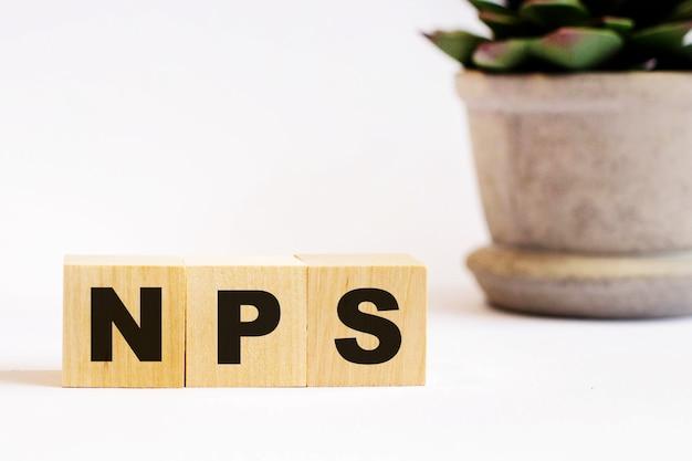 냄비에있는 꽃 근처의 밝은 표면에있는 나무 큐브에 대한 nps net promoter score라는 단어. defocus.