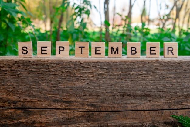 9月という言葉は木の上に木の文字で書かれています。秋のコンセプトとカレンダーのコンセプト。コピースペース