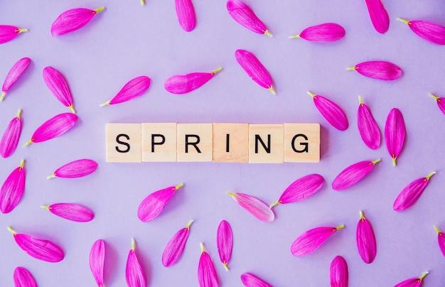 Слово весна, состоящее из деревянных блоков и лепестков цветов на фиолетовом фоне