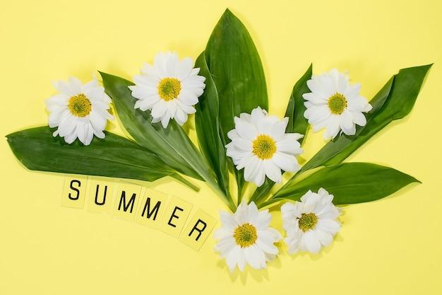 노란색 배경에 단어 여름과 데이지
