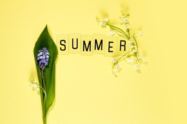 노란색 배경에 문자와 카모마일 꽃 세트가 있는 여름이라는 단어