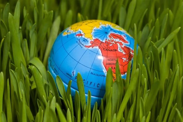世界のアースデイ、地球は草の上にあります
