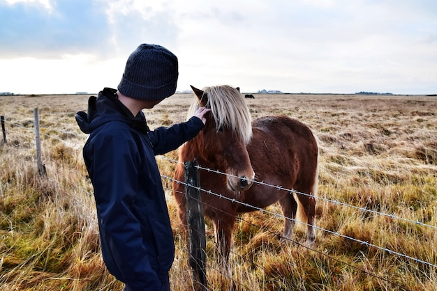 若い男がフレンドリーな馬の頭に触れる。