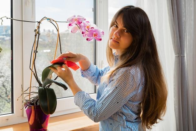 Молодая женщина вытирает пыль с зеленых листьев