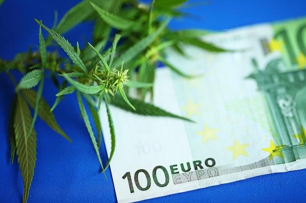 Лечебный лекарственный каннабис - цветок марихуаны и гашиш с деньгами в евро