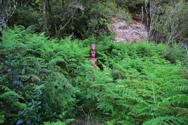 Термальный парк в роторуа, новая зеландия