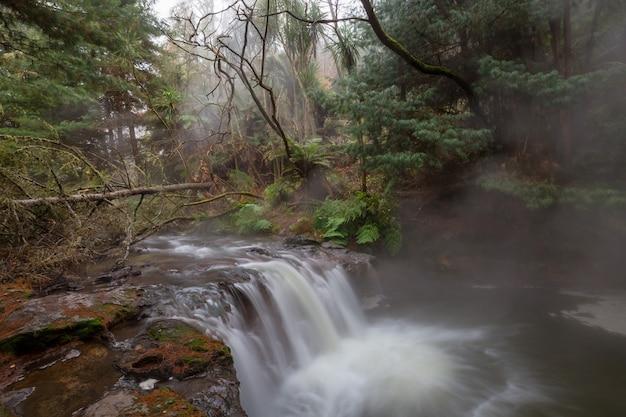 ケロセン クリーク、ロトルア、ニュージーランドの熱滝。珍しい自然の風景
