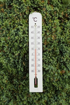 Thermometer on green tree shows low temperatures