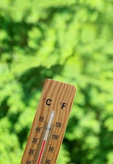 Термометр показывает температуру 35 градусов цельсия на фоне размытой зеленой листвы