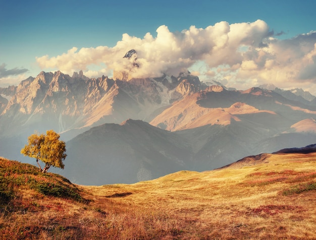Густой туман на перевале гуле. грузия, сванетия. европа.