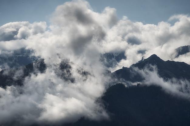 山々と針葉樹林に囲まれた厚い白い雲は、野生の自然の暗い風景を保護します