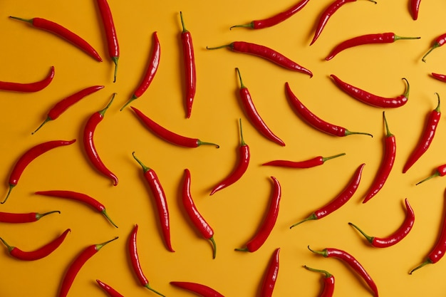 향신료, 소스 또는 요리를 만들기위한 노란색 배경에 얇은 긴 붉은 칠리 페 퍼. 지방 연소, 체중 감소 및 건강한 영양을위한 신선한 뜨거운 야채 혼합. 음식과 재료 개념
