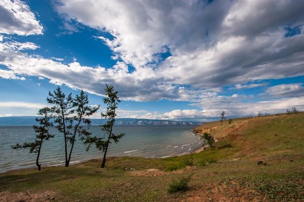Тонкие деревья на берегу байкала. красочный пейзаж с великолепными облаками на небе. горы на горизонте, волны на озере. зеленая трава и песок.