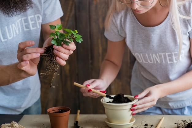 緑のモットーを考えてください。ネイチャーケアと保護の概念。植物の植え替えに従事するボランティアのカップル。